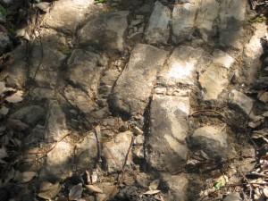 metropolitanrdcobblestones1 RB