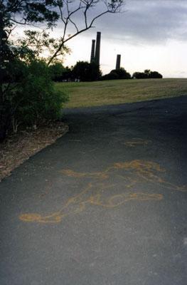 Sydney Park, 2000,