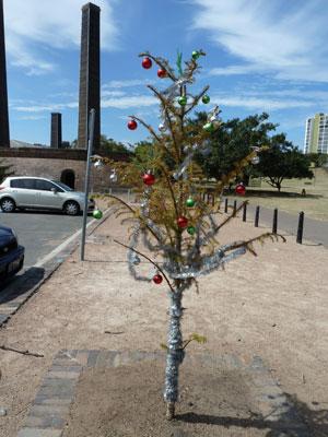 Sydney Park, December 2012