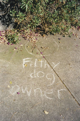 'Filthy dog owner', Enmore (Sydney), 2001.