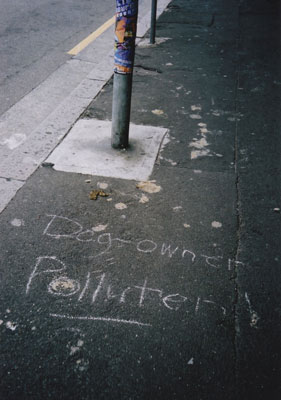 'Dog-owner polluter', Newtown (Sydney), 2003.