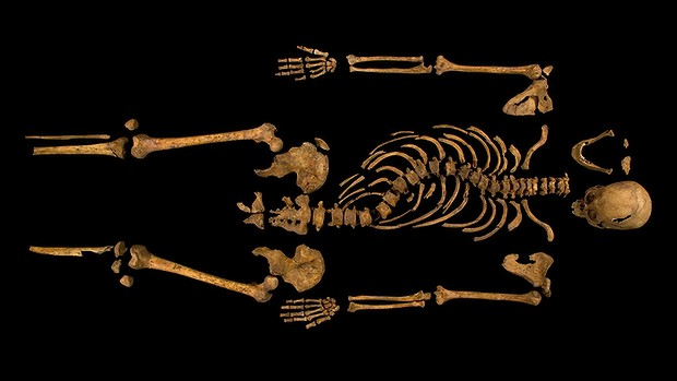 The skeleton of Richard III, with its twisted spine, which was discovered at the Grey Friars excavation site in Leicester. Photo: University of Leicester/Reuters, accessed via the Sydney Morning Herald website.
