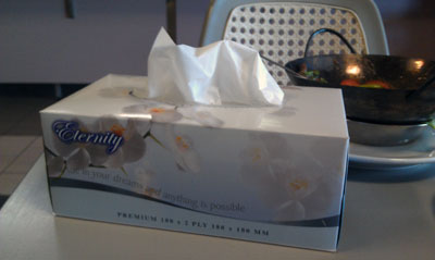 'Eternity' tissues, 2013 (photo by meganix).