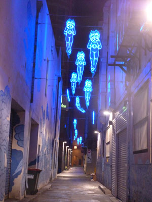 'Between Two Worlds' by Jason Wing in Kimber Lane, Sydney (photographs by meganix 2014)