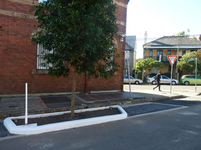 Enmore, 2014. One tree gained, two parking spaces lost.