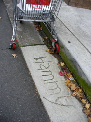 Enmore back lane (2008).